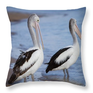 Australian Pelicans Throw Pillow