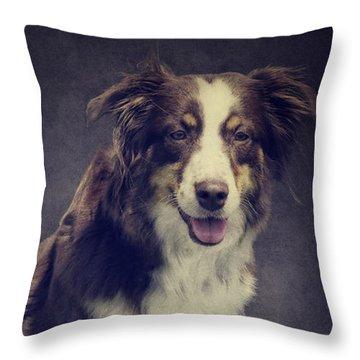 Australien Shepherd Portrait No2 Throw Pillow