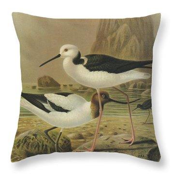 Australian Wildlife Paintings Throw Pillows