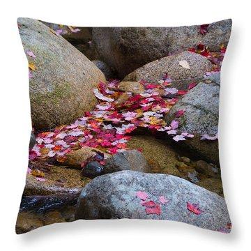 Autmun Leaves Throw Pillow
