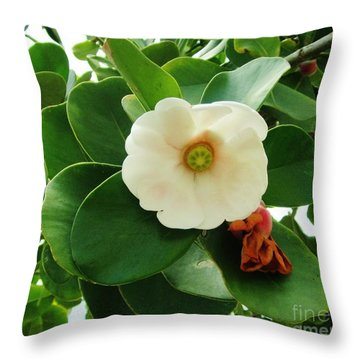 Autograph Tree Blossom Throw Pillow by Craig Wood