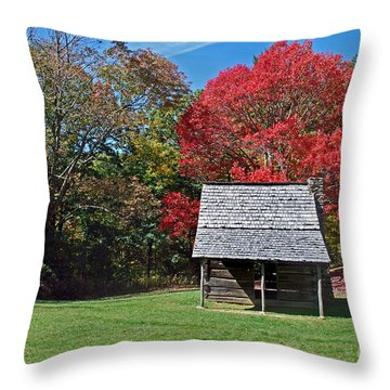 Autum For A Mountain Home Throw Pillow by Skip Willits