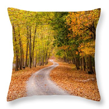 Autum Path Throw Pillow by Melinda Ledsome
