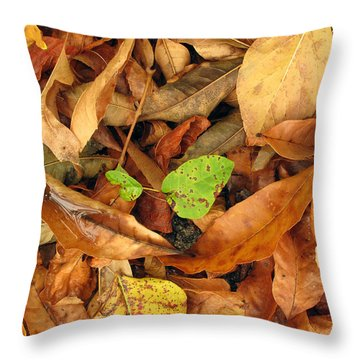 Autumn 01 Throw Pillow