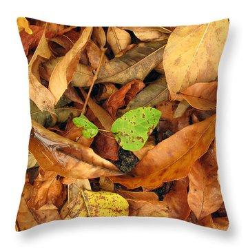 Autumn 01 Throw Pillow by Dorin Adrian Berbier