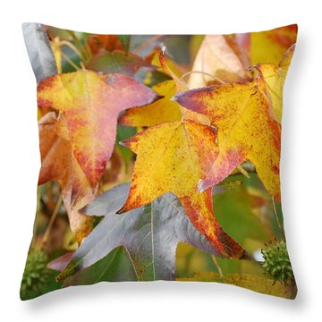 Autumn Acer Leaves Throw Pillow