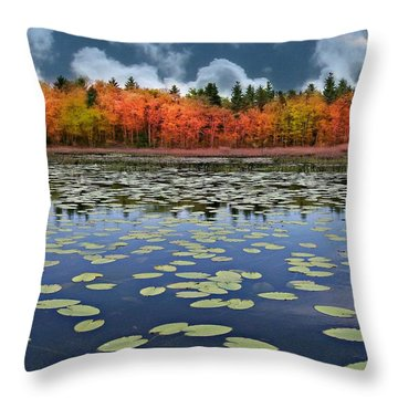 Autumn Across The Pond Throw Pillow