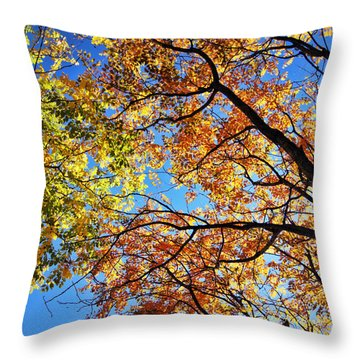 Autumn Afternoon Throw Pillow by Cricket Hackmann