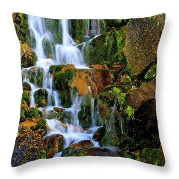 Autumn Along Summit Creek Throw Pillow