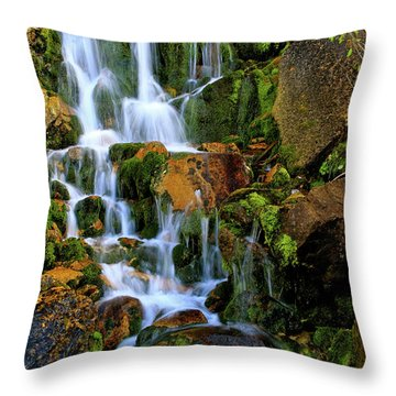 Autumn Along Summit Creek Throw Pillow