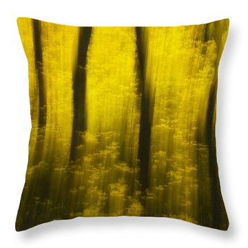 Autumn Apparitions Throw Pillow by Peter Coskun