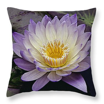 Autumn Aquatic Bloom Throw Pillow