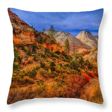 Autumn Arroyo Throw Pillow