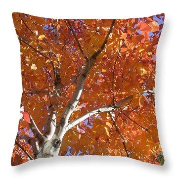 Autumn Aspen Throw Pillow