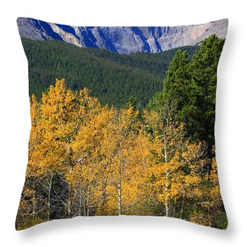 Autumn Aspens And Longs Peak Throw Pillow