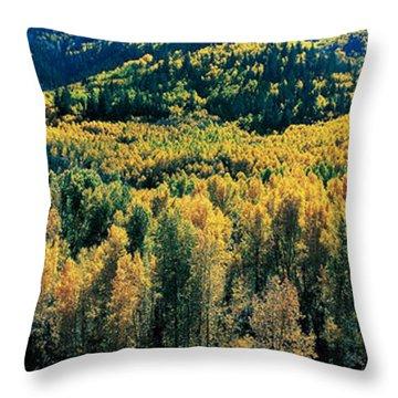 Autumn Aspens, Colorado, Usa Throw Pillow