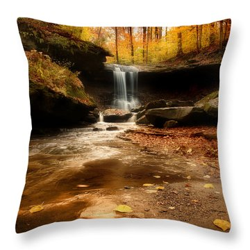 Autumn At Blue Hen Falls Throw Pillow