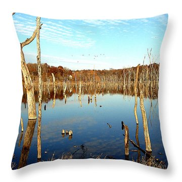 Throw Pillow featuring the photograph Autumn At Lake Jacomo 3   by Ellen Tully