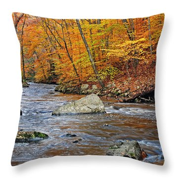 Autumn At The Black River Throw Pillow