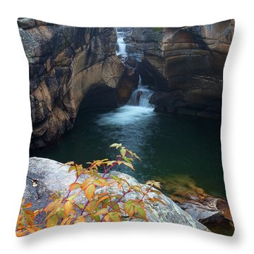 Autumn At The Grotto Throw Pillow