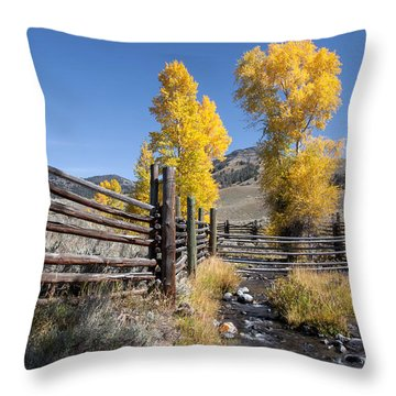 Throw Pillow featuring the photograph Autumn At The Lamar Buffalo Ranch by Jack Bell