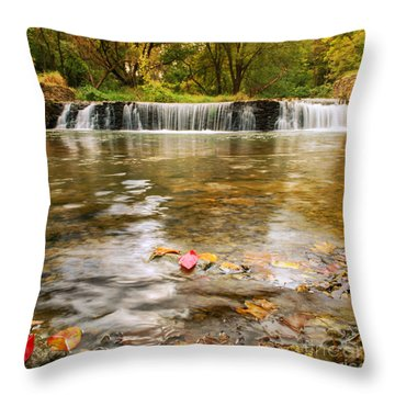 Autumn At Valley Creek Throw Pillow by Rima Biswas