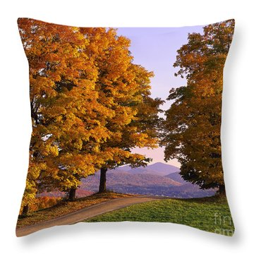 Throw Pillow featuring the photograph Autumn Backroad View by Alan L Graham