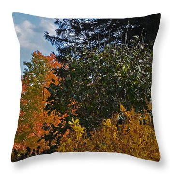 Autumn Beauty Throw Pillow by Judy Wolinsky
