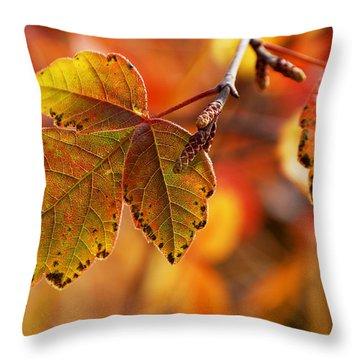 #autumn Throw Pillow by Becky Furgason