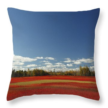 Autumn Blueberry Field Maine Throw Pillow by Scott Leslie