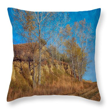 Autumn Bluff Painted Throw Pillow
