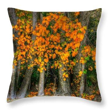 Autumn Breakout No.2 Throw Pillow