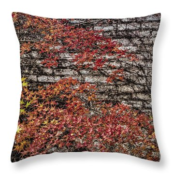 Throw Pillow featuring the photograph Autumn Bricks by Mitch Shindelbower