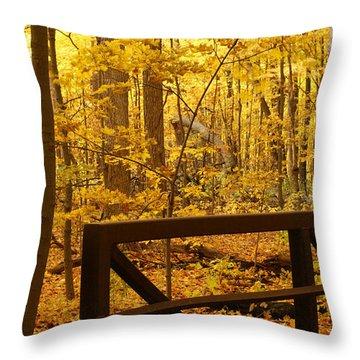 Autumn Bridge Iv Throw Pillow by Valerie Fuqua