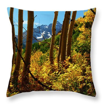 Autumn Brilliance 2 Throw Pillow
