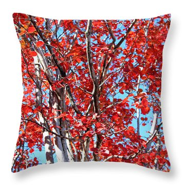 Autumn Brilliance V Throw Pillow by Suzanne Gaff