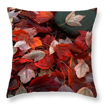 Autumn Broadcast Throw Pillow by Gwyn Newcombe