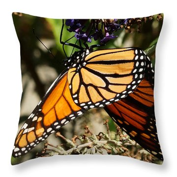 Autumn Butterfly Throw Pillow