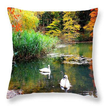 Autumn By The Swan Lake Throw Pillow
