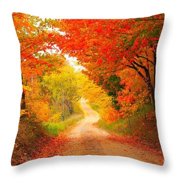 Throw Pillow featuring the photograph Autumn Cameo 2 by Terri Gostola
