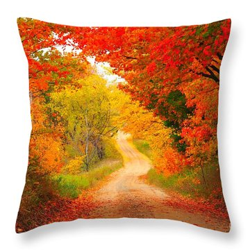 Throw Pillow featuring the photograph Autumn Cameo Road by Terri Gostola