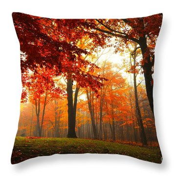 Autumn Canopy Throw Pillow by Terri Gostola