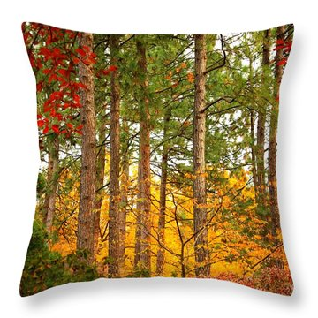 Autumn Canvas Throw Pillow