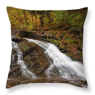 Autumn Cascade Throw Pillow by Michele Steffey