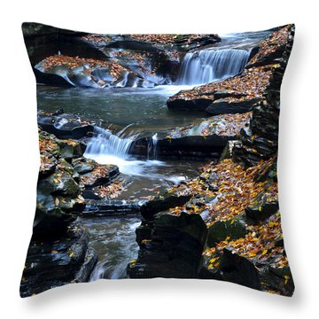 Autumn Cascade Throw Pillow by Frozen in Time Fine Art Photography