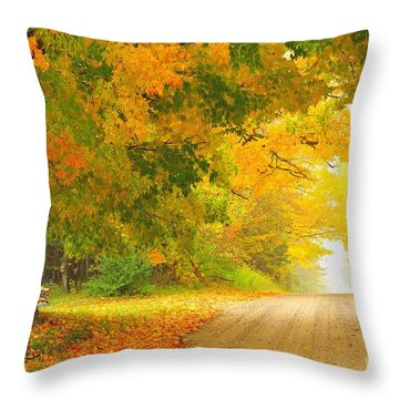 Autumn Cascade Throw Pillow by Terri Gostola