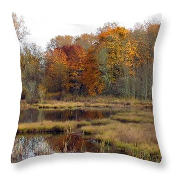 Autumn Changes  Throw Pillow
