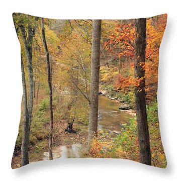 Throw Pillow featuring the photograph Autumn Cliff View by Lorna Rogers Photography