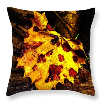 Autumn Color In June Throw Pillow