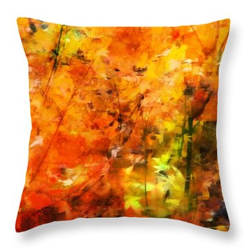 Throw Pillow featuring the photograph Autumn Colors by Aaron Berg